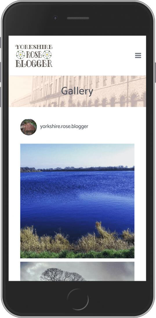 WordPress Developement for Yorkshire Rose Blogger